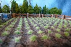 minisdotdaemonflowerdotcom-fields-cottage-0008