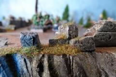 minisdotdaemonflowerdotcom-plateau-0010