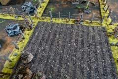 minisdotdaemonflowerdotcom-fences-hedges-0002