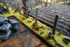minisdotdaemonflowerdotcom-fences-hedges-0003