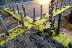 minisdotdaemonflowerdotcom-fences-hedges-0004