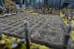 minisdotdaemonflowerdotcom-fences-hedges-0010