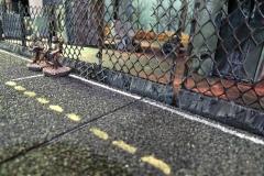 minisdotdaemonflowerdotcom-building-fences-0022