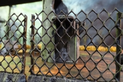 minisdotdaemonflowerdotcom-building-fences-0023